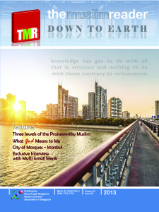 TMR 2013 Volume 31 Number 3